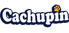 Cachupin